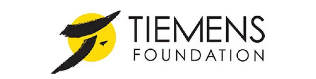 Tiemens Logo for Arts Vision